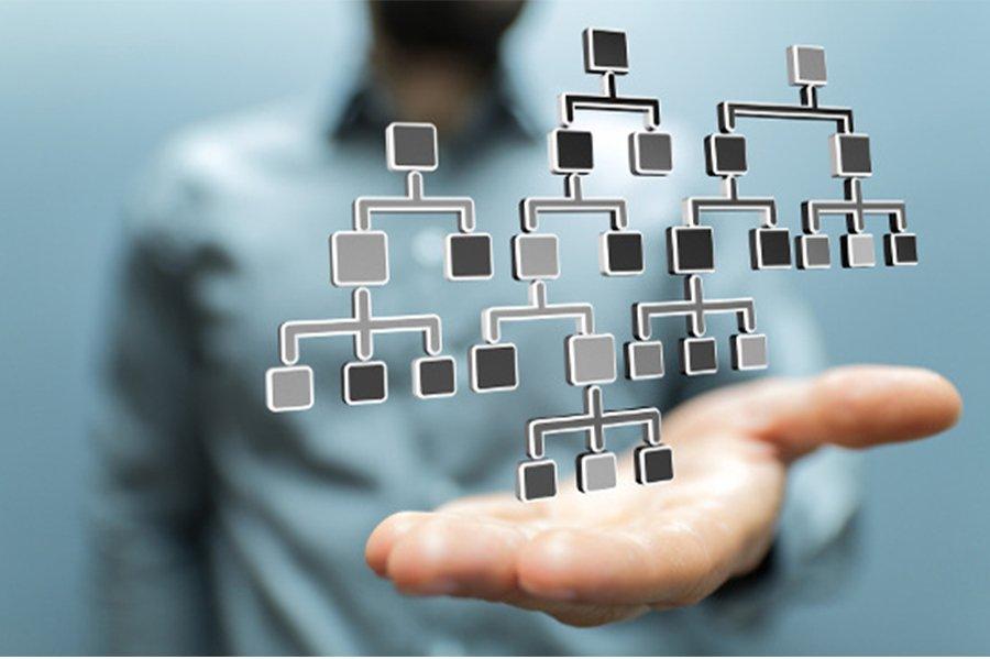 Organisational Design and Development